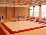 Оснащение гимнастических залов