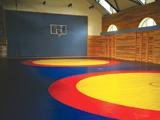 Оснащение спортивных залов для единоборств, покрытия и экипировка