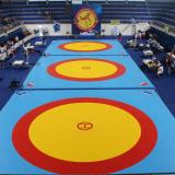 Ковер борцовский соревновательный одобрен UWW