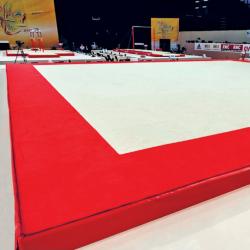 Покрытие ковровое 13,05х13,05 м для тренировок по спортивной гимнастике - Сертификат FIG