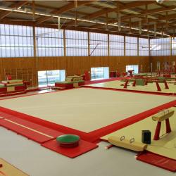 Покрытие ковровое 14х14 м для соревнований и тренировок по спортивной гимнастике - Сертификат FIG